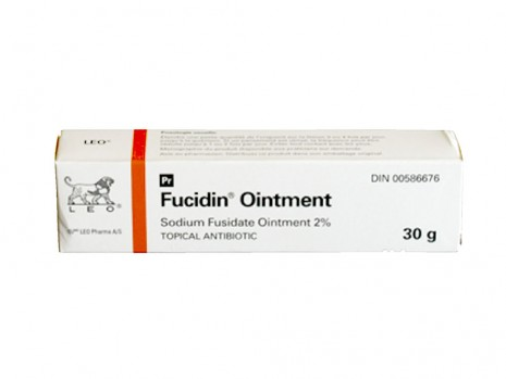 FUCIDIN ANTIBIOTIC OINTMENT